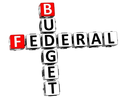 indirect: 3D Budget Federal text Crossword on white background