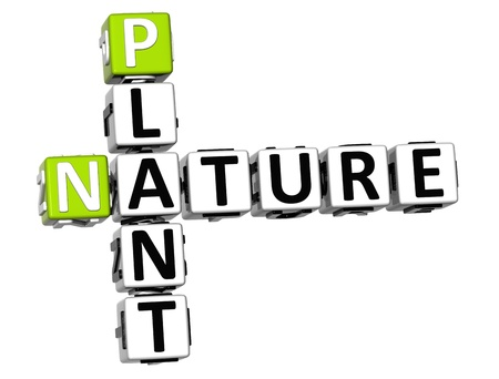 3D Plant  Nature Crossword text over white background photo