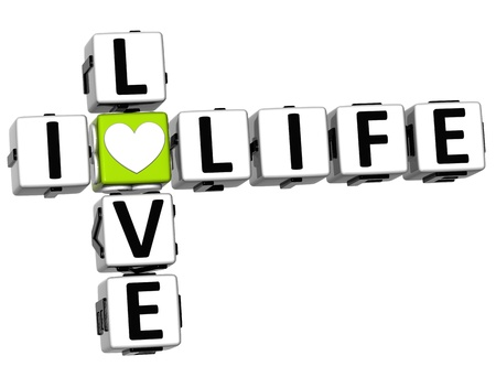 enjoy life: 3D I Love Life Crossword Block text on white background Stock Photo