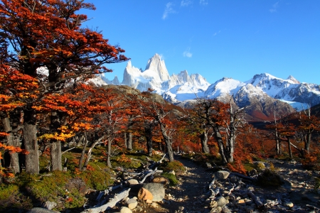 mendoza: Beautiful nature landscape with Mt. Fitz Roy as seen in Los Glaciares National Park, Patagonia, Argentina