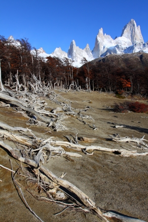 fitzroy: Beautiful nature landscape with Mt. Fitz Roy as seen in Los Glaciares National Park, Patagonia, Argentina