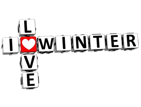 3D I Love Winter Crossword on white background photo