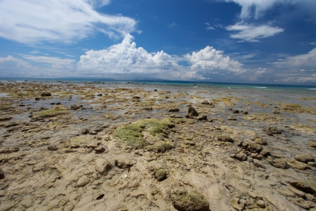 Low tide and blue sky with white clouds on the coral beach. Andaman islands.  photo