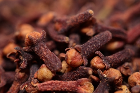 Macro of spice cloves  photo