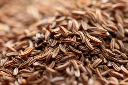 Cumin seeds texture, full frame background photo