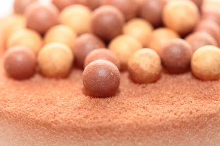 Beige cosmetics multicolor rouge balls background, macro view photo