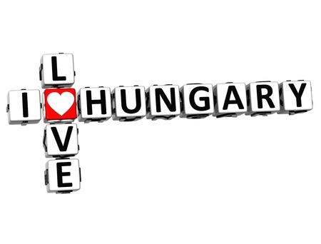 3D I Love Hungary Crossword on white background photo
