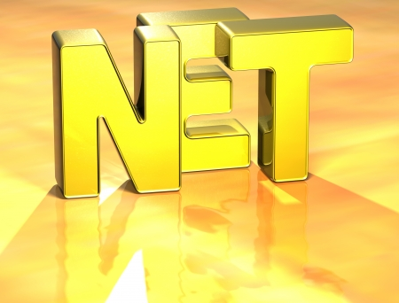 3D Word Net on yellow background photo