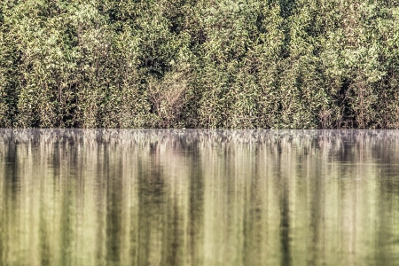 rio amazonas: Río Amazonas en la mañana (HDR) Foto de archivo