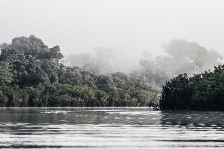 Amazon river in morning ( HDR image ) photo