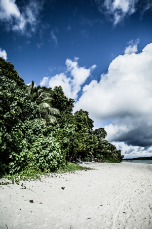 Tropical island of Havelock in Andaman, India. ( HDR image ) Stock Photo - 17144895