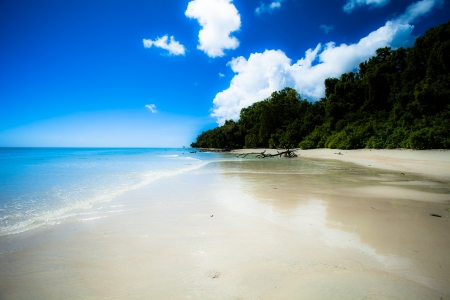 Tropical island of Havelock in Andaman, India. ( HDR image ) Stock Photo - 17144600