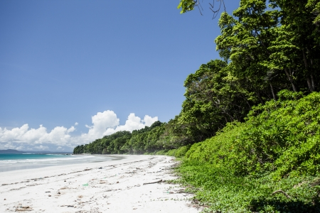 Tropical island of Havelock in Andaman, India. ( HDR image ) Stock Photo - 17147220