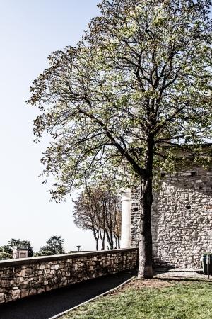 Old european street, Bergamo, Italy ( HDR image ) Stock Photo - 17231217