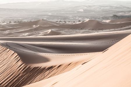Sand dunes at sunset in the Sahara  in Morocco   photo