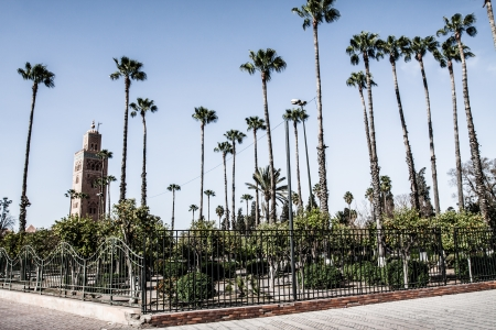 Morocco. Marrakech. Mosque of Koutoubia ( HDR image ) photo