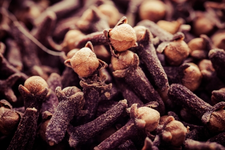 Macro of spice cloves in vintage photo