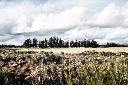 tongariro: Tongariro National Park, Nueva Zelanda Foto de archivo