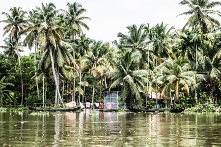 alappuzha: House boat in backwaters near palms in Alappuzha, Kerala, India ( HDR image )