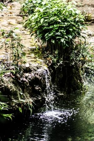 Semuc champey Guatemala paradise