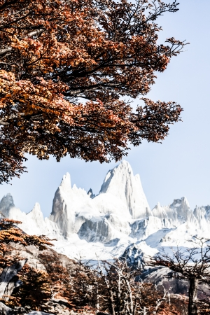 Nature landscape with Mt. Fitz Roy in Los Glaciares National Park, Patagonia, Argentina ( HDR image ) Stock Photo - 17722922