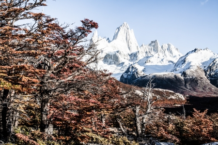 campo de hielo sur: Nature landscape with Mt. Fitz Roy in Los Glaciares National Park, Patagonia, Argentina ( HDR image ) Stock Photo