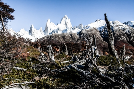 cerro chalten: Nature landscape with Mt. Fitz Roy in Los Glaciares National Park, Patagonia, Argentina ( HDR image ) Stock Photo