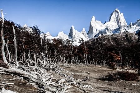los glaciares: Natura con il Monte. Fitz Roy nel Parco Nazionale Los Glaciares, Patagonia, Argentina (immagine HDR) Archivio Fotografico