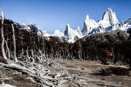 Nature landscape with Mt. Fitz Roy in Los Glaciares National Park, Patagonia, Argentina ( HDR image ) Stock Photo - 17723198