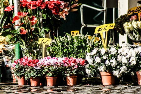 Flowers in street market photo