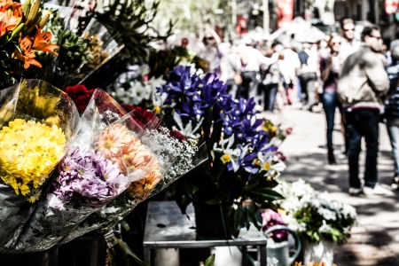 Barcelona Ramblas street life from flowers market  photo
