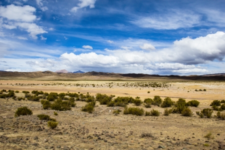 A desert on the altiplano of the andes in Bolivia  photo