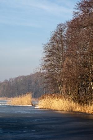 frosty morning: Traditional polish landscape in winter, frozen lake.