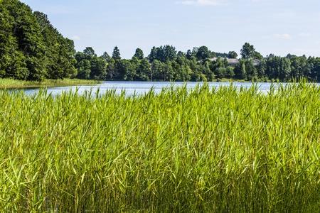 the deepest: Lago Hancza. El lago m�s profundo de Europa Central y Oriental. Polonia