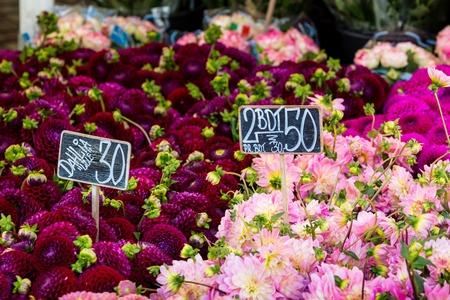 buttercups: Colorful bouquets of dahlias flowers at market in Copenhagen, Denmark.