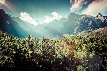 morskie: View of Tatra Mountains from hiking trail. Poland. Europe.  Stock Photo