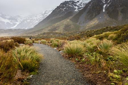 hooker: Hooker Lake in Mount Cook National Park, New Zealand