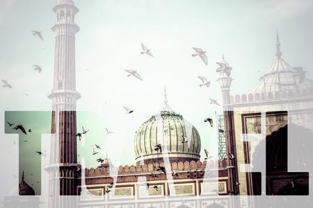jama mashid: Word TRAVEL over Famous Jama Masjid Mosque in old Delhi, India.