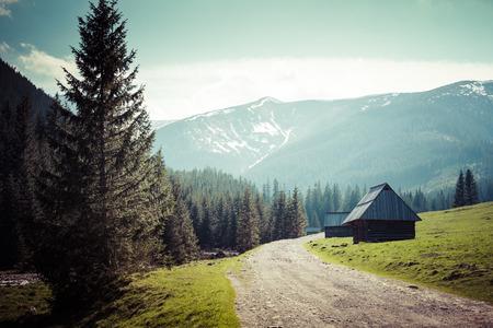 sheep road sign: Chocholowska valley, Tatra Mountains, Poland Stock Photo