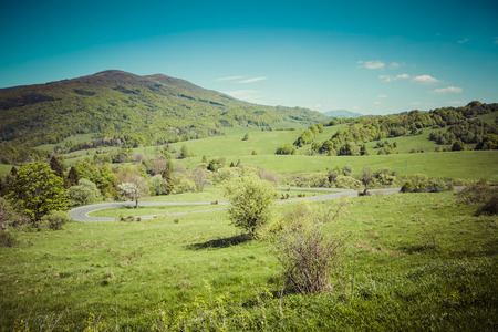 uplands: Mountains scenery. Panorama of grassland and forest in Bieszczady National Park. Carpathians landscape, Poland.