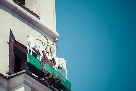 macho cabrio: Las cabras mecanizadas, que encabeza a tope todos los d�as al mediod�a. Foto de archivo