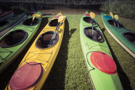 lakeshore: Colorful kayaks moored on lakeshore