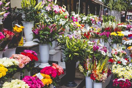 riga: Flower market in Riga, Latvia