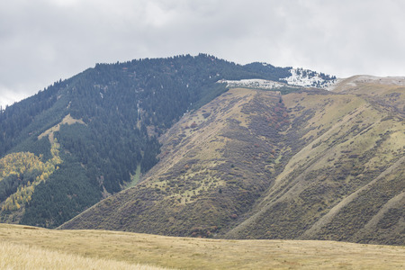 tien shan: Picturesque landscape in Tien Shan mountains in Kyrgyzstan.