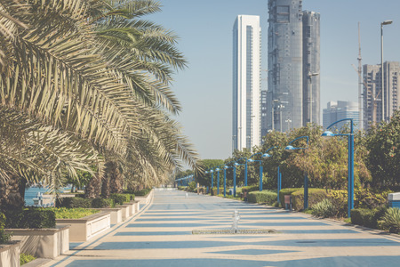 seafront: Park on the seafront against the backdrop of Abu Dhabi buildings