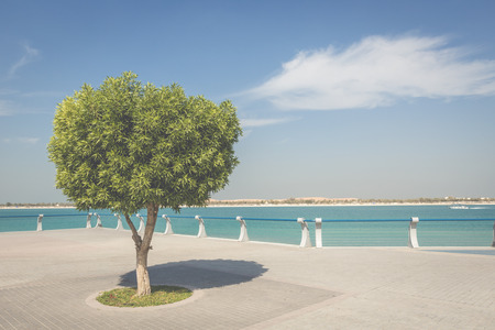 seafront: Seafront against the backdrop of Abu Dhabi