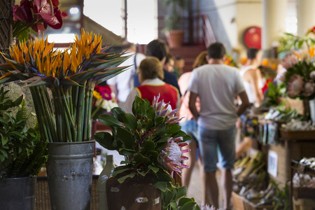 june 25: FUNCHAL, PORTUGAL - JUNE 25:Exotic flowers in Mercado Dos Lavradores.on June 25, 2015 in Madeira Island, Portugal.