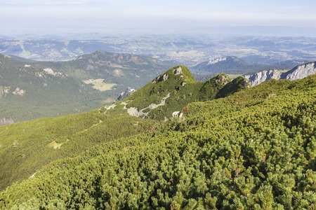morskie: View of Tatra Mountains from hiking trail. Poland. Europe.