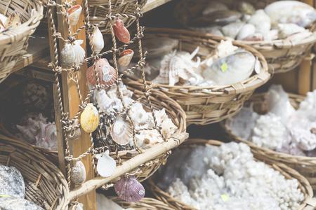 cushion sea star: Starfish and seashells souvenirs for sale