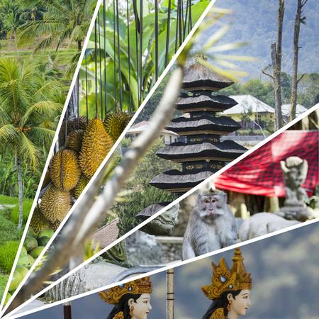 ubud: Collage of Bali (Indonesia) images - travel background Stock Photo
